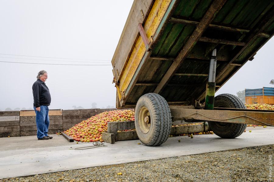 Tracteur fournisseurs de pommes - Cidrerie Coat-Albret © Pascal Glais